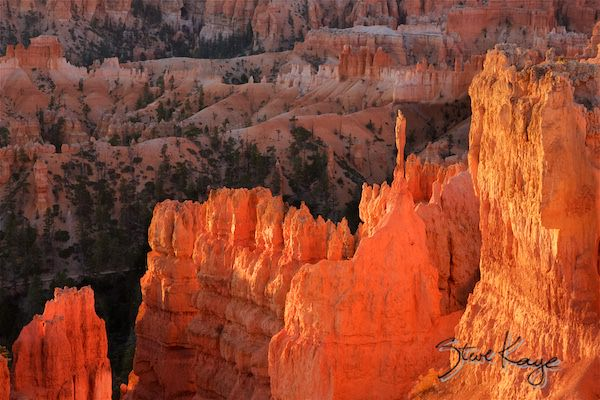 Bryce Canyon National Park, Sunrise Point, at Sunrise, (c) Photo by Steve Kaye, in Extraordinary Photo Class